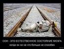 Семен Иванов фото #10