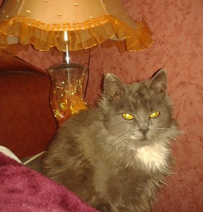 Барон Дуров, 19 августа 1996, Киев, id194727180