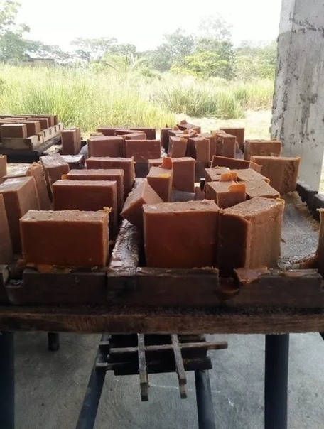 Процесс производства тростникового сахара