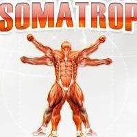 стероиды тестостерон пропионат