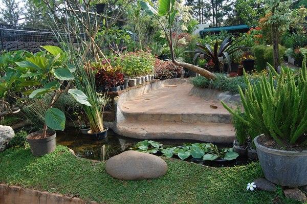 Помогайте - ландшафтный дизайн в Индонезии :) IGNBSUWEh9U
