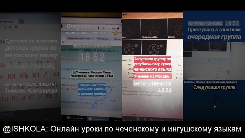 Онлайн занятия по чеченскому и ингушскому языкам