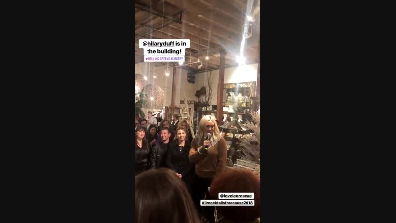 06/12/2018 - Хилари и Мэттью на 1-м ежегодном мероприятии компании Love Leo Rescue в Rolling Greens, ЛА