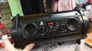 Портативная Мощная Колонка HBPC 1602. Радио качественное, флешка ,регулировка басса, SD-карта