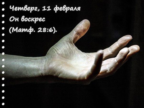 Исследуем Писания каждый день 2016 - Страница 2 IZflrARl14M