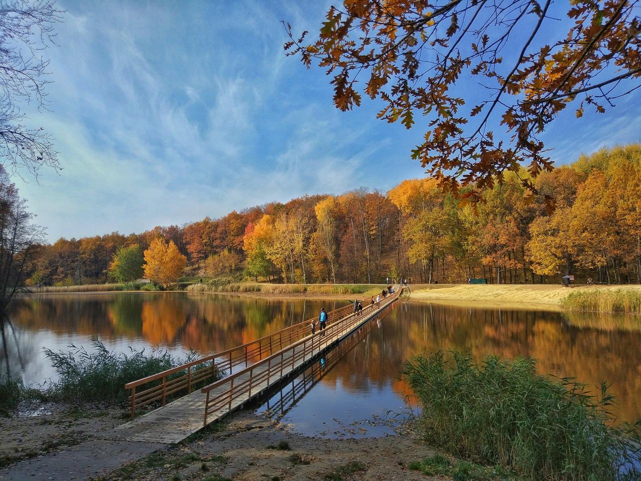 маршалково, строитель, яковлевский район, парк, осень, белгородская область, белгородский обозреватель