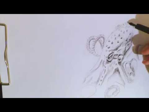 Как Нарисовать Осьминога Speed Art How to draw octopuc