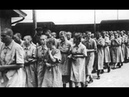 Вскрылись самые СТРАШНЫЕ страницы истории! Бордель в Освенциме...! TheRelizzz