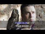 Совы нежные - Les Pires Караоке видео HD