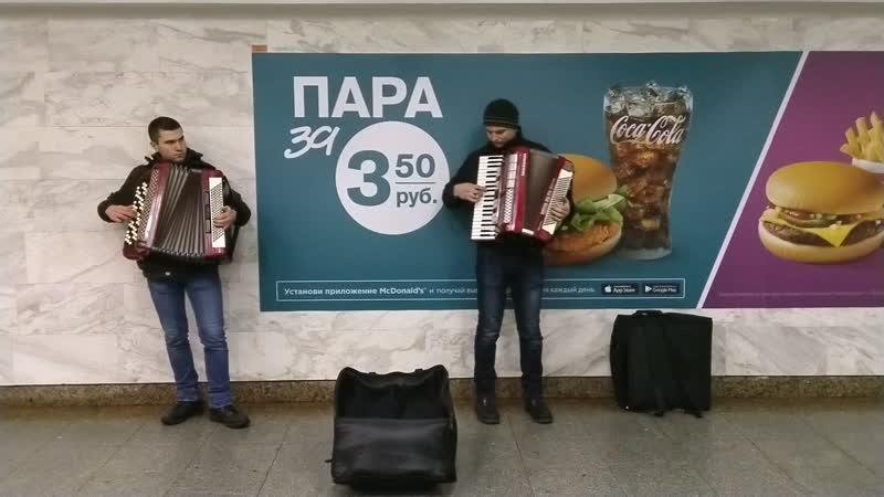 Гимн Беларуси на гармошках Волновались перед камерой Nokia 6 1 OZO Audio