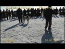Стенка ВКО-Россия 18.03.2018 г.диск N 9