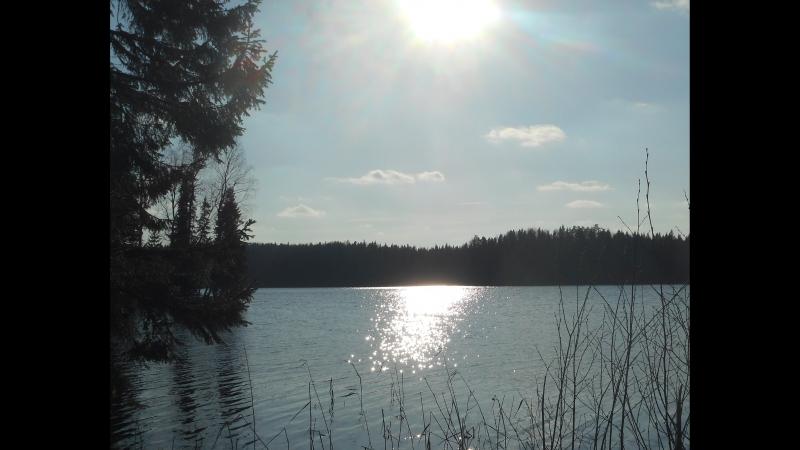 Май 2018 г. , о. Тёгро-озеро .