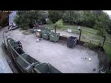 Нет сил дойти до мусорки (Арзамас, ул.Парковая)