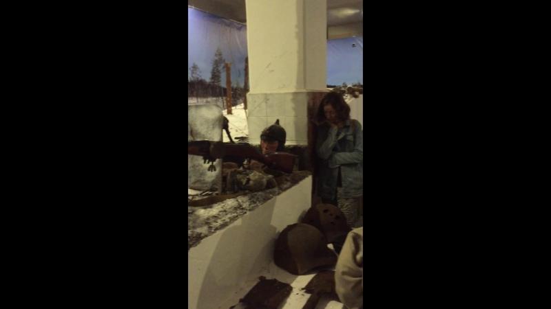 Музей Карельского перешейка Viipuri