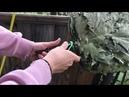 Фирменный узел Фермер 8 для регулирующихся завязок на вениках для бани