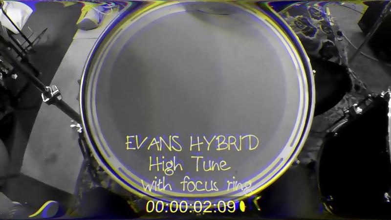 EVANS HYBRID RAW TEST