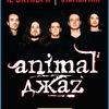 УЖЕ СЕГОДНЯ! Animal Джаz ► Воронеж, 12.10.2018