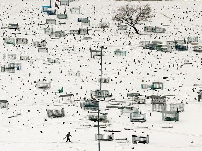 Кращі фотографії National Geographic листопада 2013