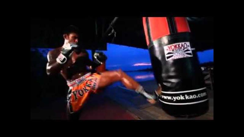 Buakaw Banchamek. Yokkao fight team.