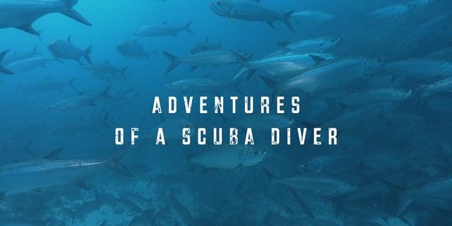 Adventures of a Scuba Diver