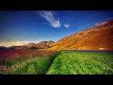 Pete Silver - Nature Reborn (Original Mix) Gent Trance Division