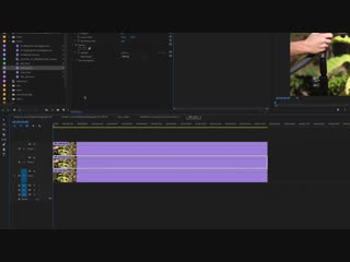 How to Create a Cinemagraph in Adobe Premiere Pro