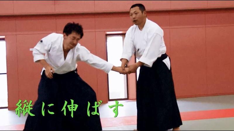 東京稽古会197 縦に伸ばす 大東流合気柔術