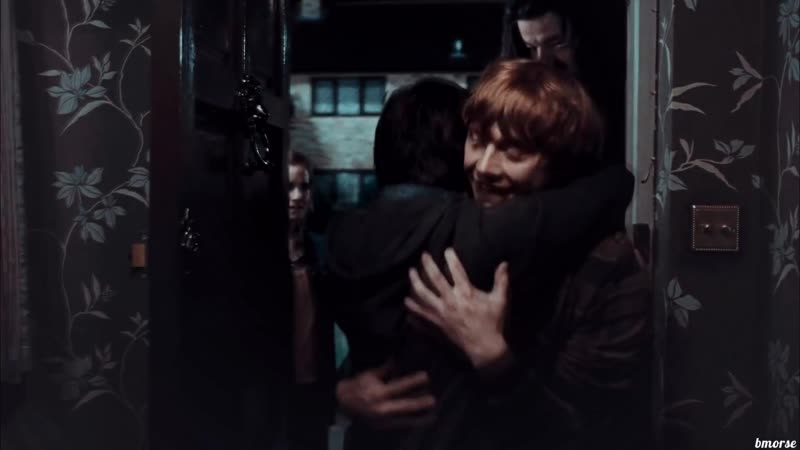 The golden trio | Hermione | Harry | Ron | -hey brother