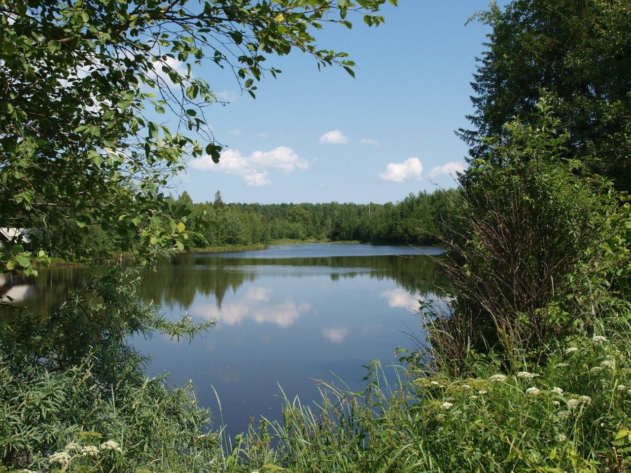 Озеро Чоти Крилатих у Луквиці