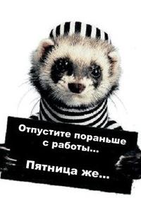Игорь Милованов, 2 февраля 1970, Киев, id8537487