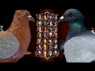 Смертельная битва ростовских голубей