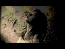 Roscoe Holcomb - I Wish I Was A Single Girl Again (1970) HQ
