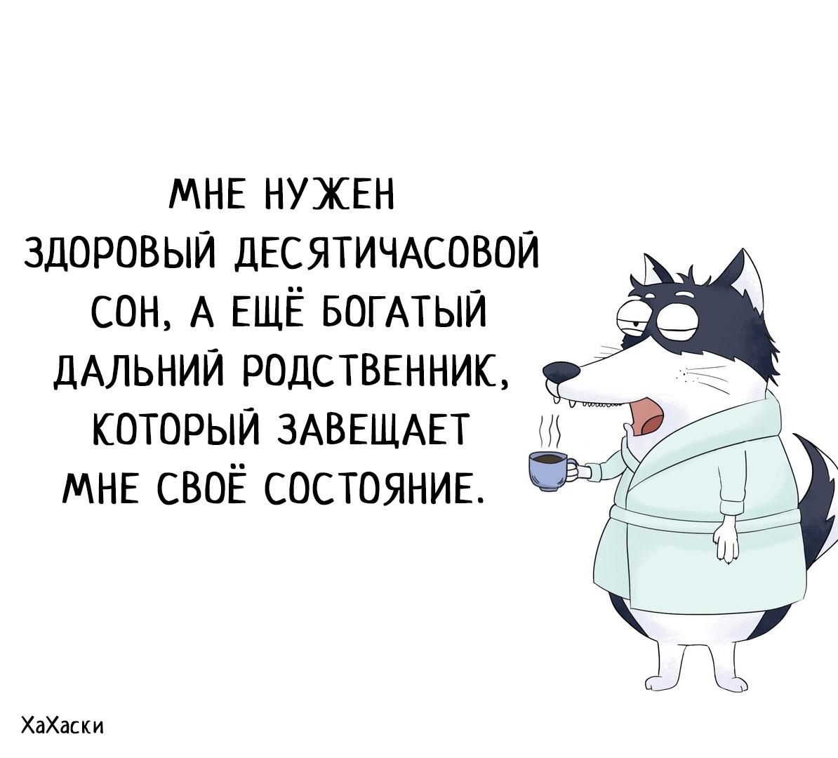 https://pp.userapi.com/c852024/v852024983/1214d/Kiez6MEKpIM.jpg