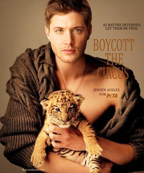 Jensen Ackles for PETA Jensen Ackles Peta