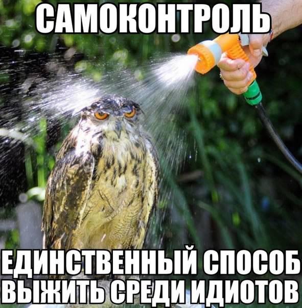[Изображение: u6tLsKNjoDQ.jpg]