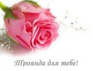 роза,розы,цветы,подруге,любовь,люблю,для тебя,троянда,троянди,квіти,для тебе