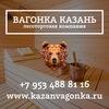 Казань: Вагонка, Полог, Доска пола, Блок-хаус