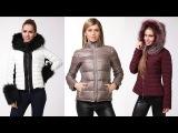Модные Женские Куртки Зима 2014