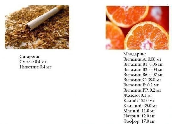 питание для желающих похудеть