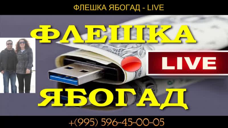 Флешка Ябогад Live как заработать на прямых эфирах отзывы glprt.ru/affiliate/10042184
