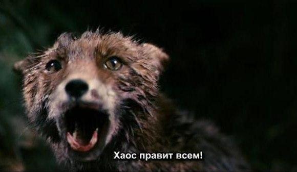 Фильмы Ларс Фон Триер