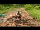 Так в Индии выпускают змей на волю 😱