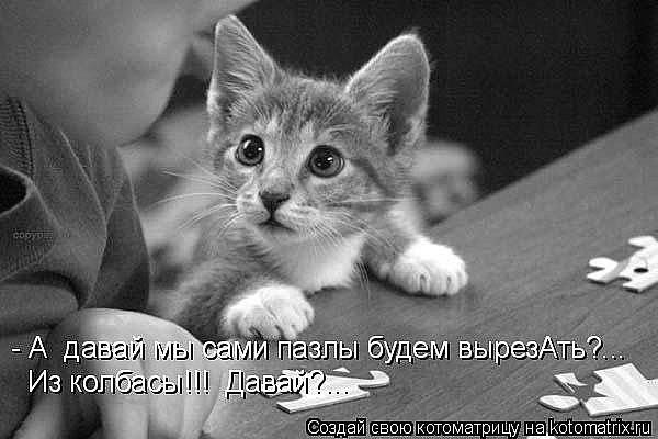 http://cs14115.vk.me/c7008/v7008313/27a7/6KRNWUX87is.jpg
