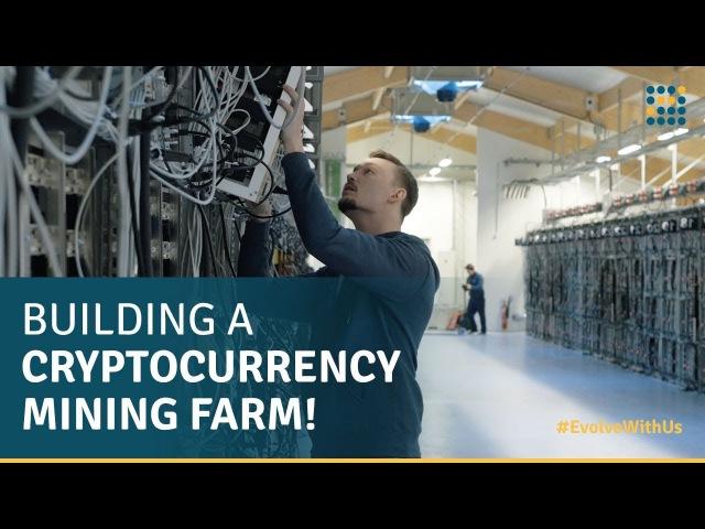 В чем сложность построить большую ферму для майнинга криптовалют?
