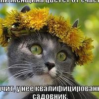 Анна Собко, 31 марта , Омск, id221580068