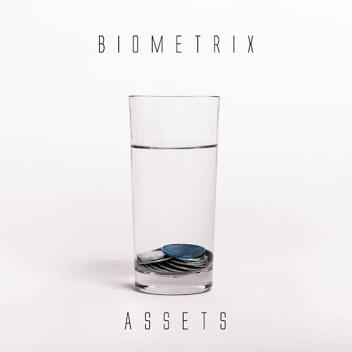 Biometrix альбом Assets