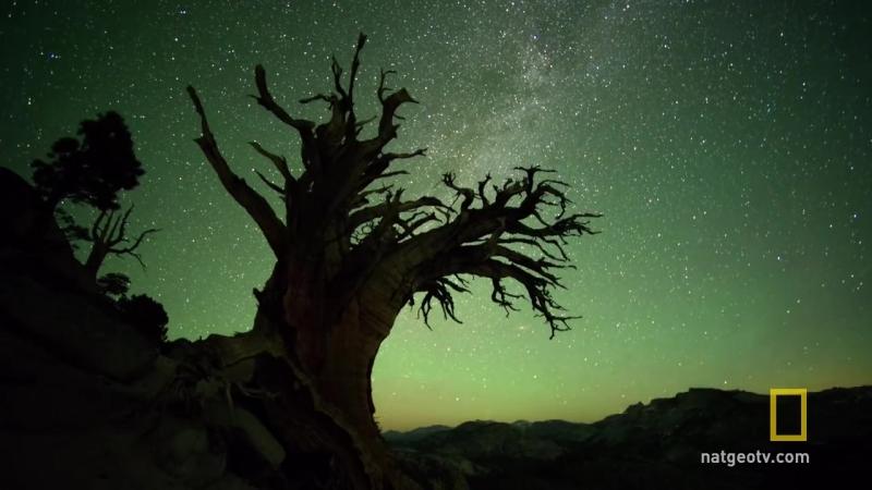 Калифорния Yosemite National Park - America's National Parks