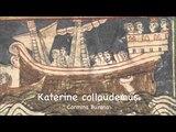 Carmina Burana (Anon.11-13th c.) - CB 19 Katerine collaudemus