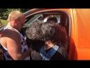 SPL Tournament Солнечногорск медведь 🐻 раздаёт без остановки