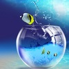 аквариумы продажа